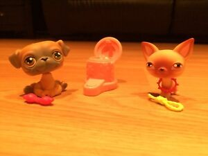 Littlest Pet Shop Pet Pairs Chihuahua and Pug #1, 2 (2006)
