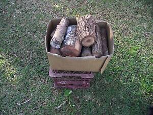 Firewood mixed hardwood Avoca Beach Gosford Area Preview