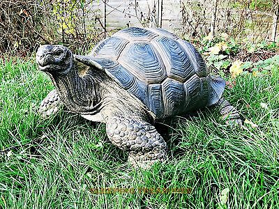 GIANT TORTOISE, INCREDIBLE HUGE SIZE HOME & GARDEN ORNAMENT. ULTRA REALISTIC