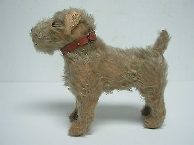 "ANTIQUE STEIFF TERRIER DOG w GLASS EYES LEATHER COLLAR 9 1/2"" high X 10"" wide"