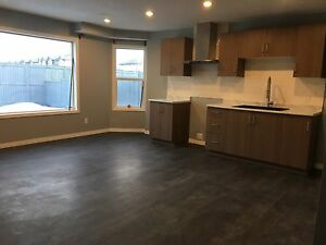 Brand New Walk Out Basement in Airdrie