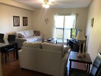 Lg 1 bedroom apartment $1000 month