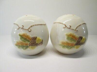 Pfaltzgraft Porcelain Ceramic Salt and Pepper Shakers Acorns Leaves Oval set#88 ()