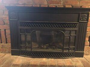 Enviro Propane Fireplace insert $650