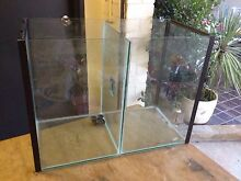 Discus breeding tank 2ft divided Earlwood Canterbury Area Preview