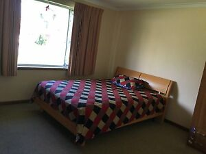 Short time accomodation/long time lease in Kewdale Kewdale Belmont Area Preview