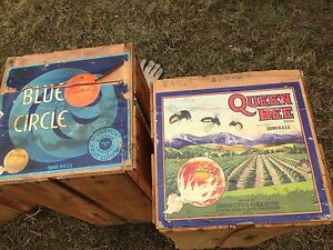 1930's and 40's wooden fruit boxes