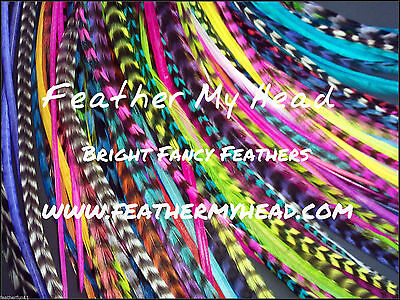 Feather Hair Extensions 50 Pc Premium Whiting Eurohackle Long, Simply The Best for sale  Shipping to India