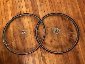 Campagnolo Record / Open Pro wheels
