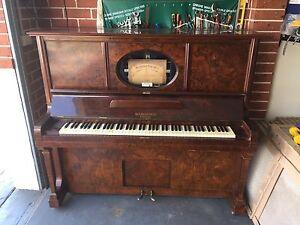 Pianola Narellan Vale Camden Area Preview