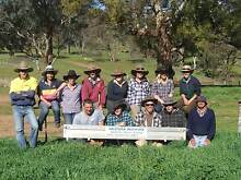 Certificate II in Agriculture to become a Jackaroo/Jillaroo Dubbo 2830 Dubbo Area Preview