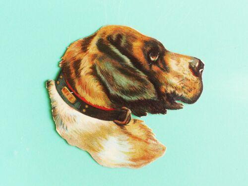 Antique die Cut Hound dog w brass buckle collar hunting sporting dog