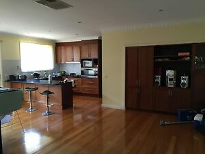 Box Hill North, spacious room in house share $141 per week. Box Hill North Whitehorse Area Preview