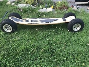 Skateboard longboard completes decks wheels