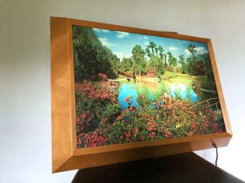 Vintage HELMSCENE Mid-Century ILLUMINATED Florida SCENE Framed LAMP Lighted ART
