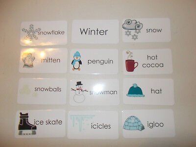 11 Laminated Basic Winter Picture and Word Flashcards. Preschool and Daycare lea