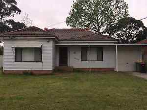 House for rent Padstow Bankstown Area Preview