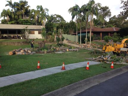 Dynamic Tree Solutions - Tree Lopping/ removal Sunnybank Hills Brisbane South West Preview