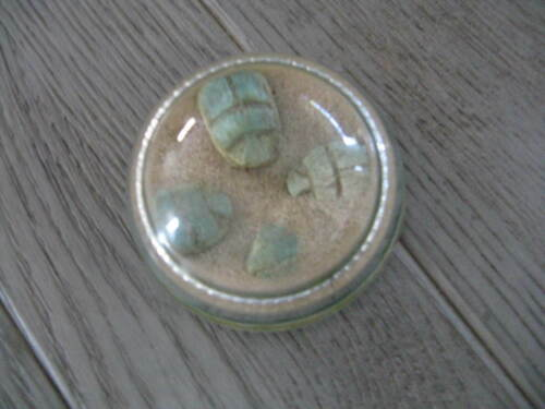 Vintage Paperweight 4 Scarabs in Sand