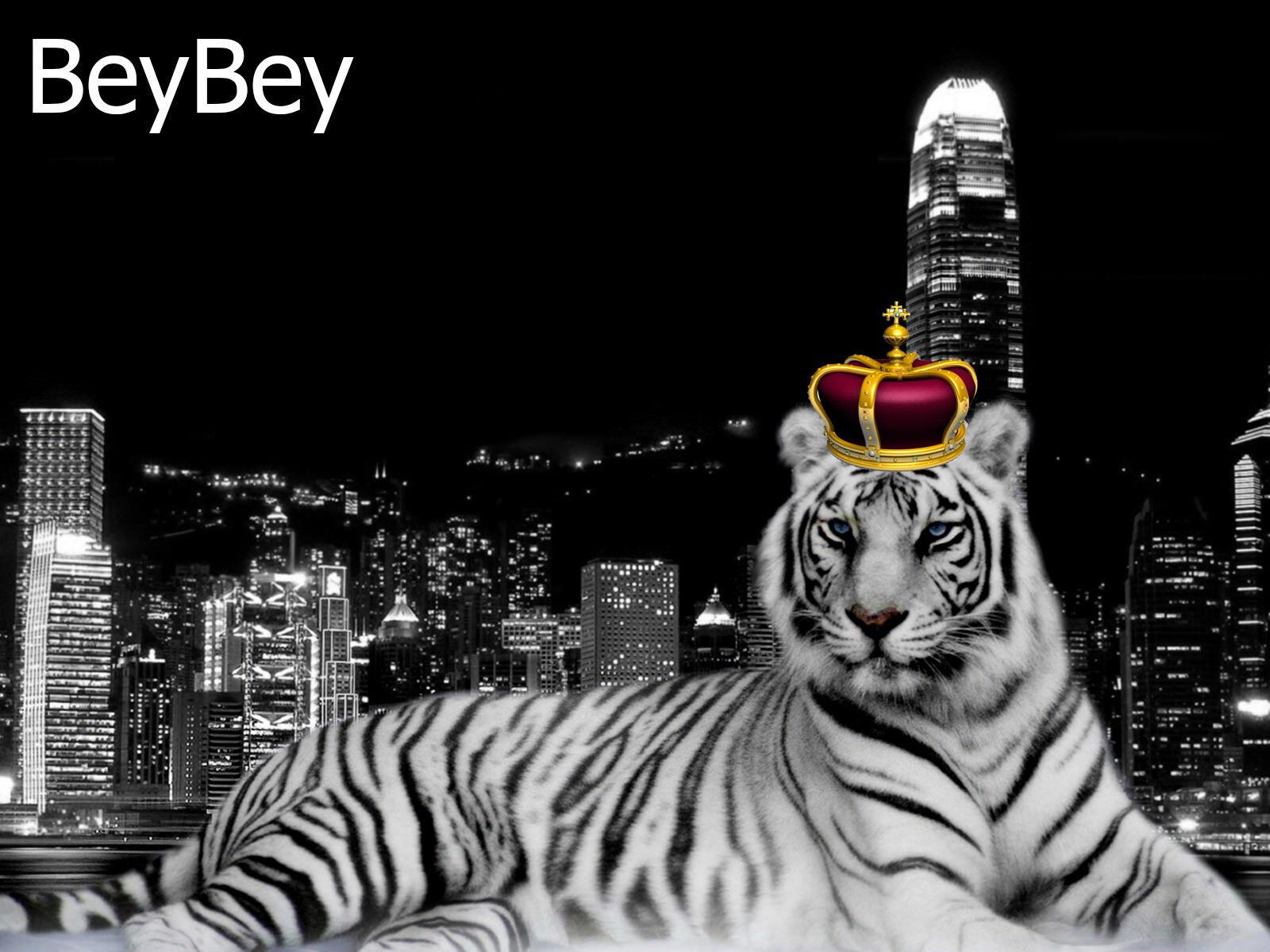 BeyBey
