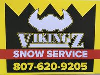 SNOW CLEARING & FULL SNOW REMOVAL SERVICES.