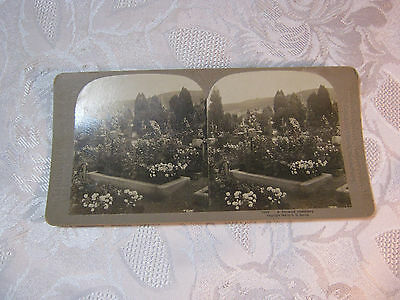 A German Cemetery Stereoview Card Photo Antique    T