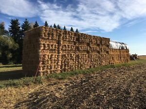 Flax Straw Bales & Wheat Straw Bales (Small Square)