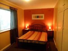 Lovely Room suit 2-3 travelling companions, near Aldi St Kilda Port Phillip Preview