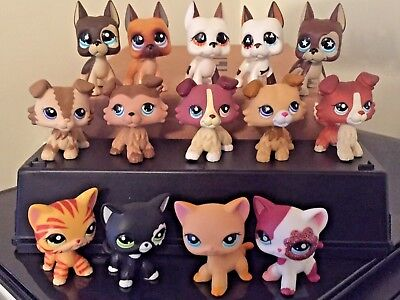 Littlest Pet Shop LPS Great Dane Dog #577 LPS Collie Cat #339 3 Random FREE SHIP