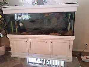 8 foot fish tank with fish Yagoona Bankstown Area Preview