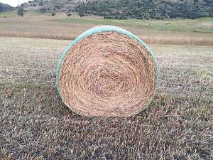 Grass HAY Rye Richmond Clarence Area Preview