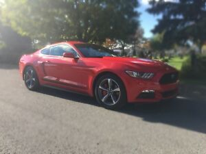 2016 Ford Mustang ***financement disponible***