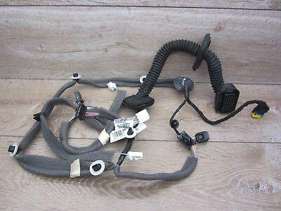Cable Loom Door Door Wiring Harness, Front Left 241252327r Renault Scenic III Jz