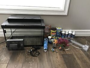 Fish tank includes water filter