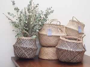 Belly baskets to clear! Enmore Marrickville Area Preview