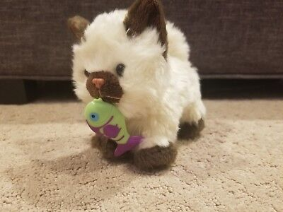 American Girl Himalayan Kitten Cat With Magnetic Fish Toy Marisol 2014 Pet