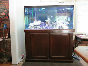 Complete 90 gallon salt water fish tank aquarium w cabinet for 90 gallon fish tank dimensions