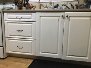 WANTED: Raised Panel style Cabinet Doors