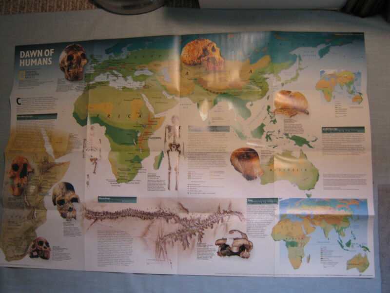 DAWN OF HUMANS + SEEKING OUR ORIGINS EVOLUTION MAP National Geographic 1997 MINT
