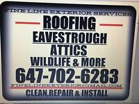 EXTERIOR HOME MAINTENANCE PROJECTS