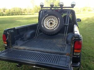 Pickup truck custom roll bar