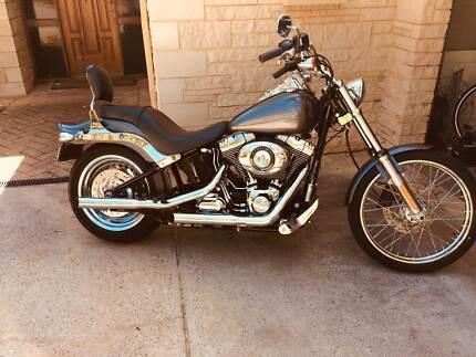 2013 Harley Davidson Softail Standard 1690cc (FXST) MY14