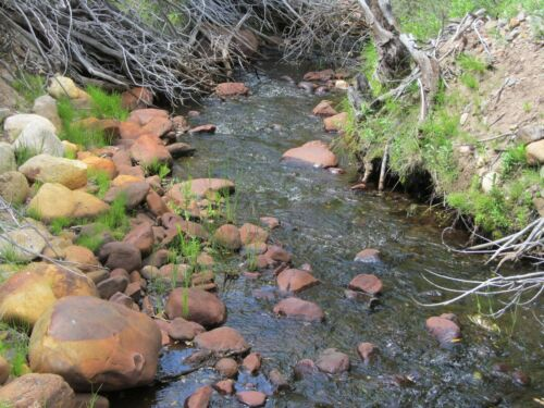 Virginia Creek Gold Mine Silver Dog Creek California Placer Mining Claim Au Ag