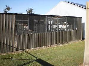 FOR SALE Huge Bird Aviary $4,500 Copmanhurst Clarence Valley Preview