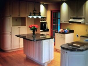 Kitchen cabinets and counters +++++