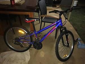 Repco Blade bike Dubbo Dubbo Area Preview