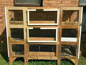 Guinea pig rabbit cage/ run Macquarie Fields Campbelltown Area Preview