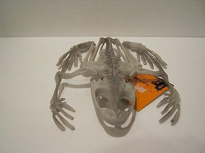 Frog Skeleton - Laboratory set prop/decoration - Halloween Monster Stuff... - Halloween Laboratory Props