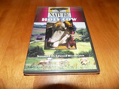 NATURE HOLY COW Cows Cattle Bulls Bull Ranching Animals Agriculture PBS DVD NEW