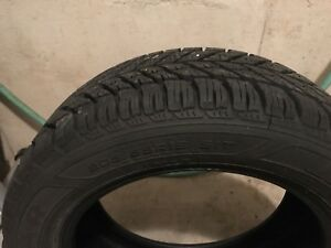 GOODYEAR Winter Tyres (205/55 R16)